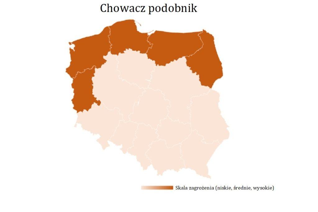 Chowacz-podobnik-mapa-wystepowania-owadow