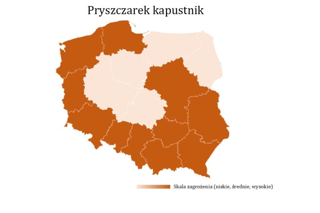 Pryszczarek-kapustnik-mapa-wystepowania-owadow