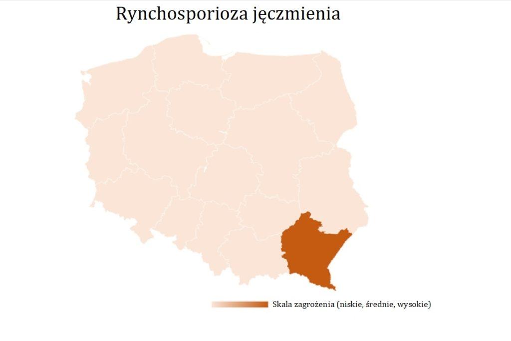 Rynchosporioza-jeczmienia-wystepowania-owadow