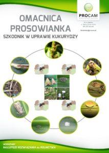 omacnica-prosowianka-szkodniki-uprawa-kukurydzy