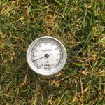 Temperatura gleby