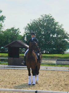 Dziewczyna siedząca na koniu